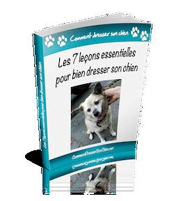 7 leçons essentielles pour bien dresser son chien ou chiot par Frank Berthelot